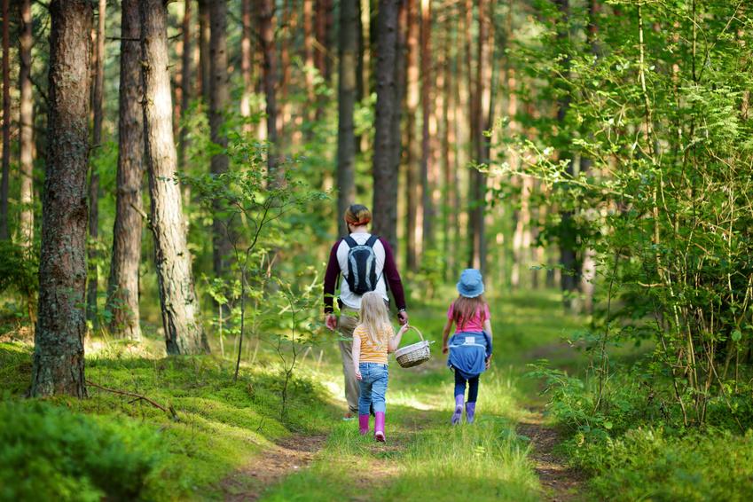 Familie im Wald