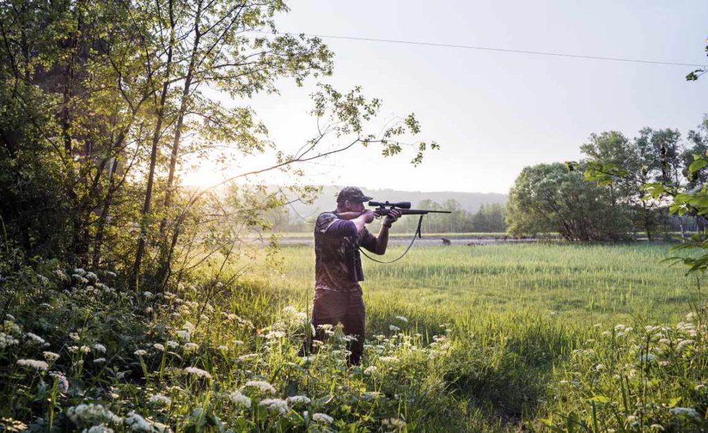 Der saubere Schuss ist Voraussetzung für hochwertiges Wildbret