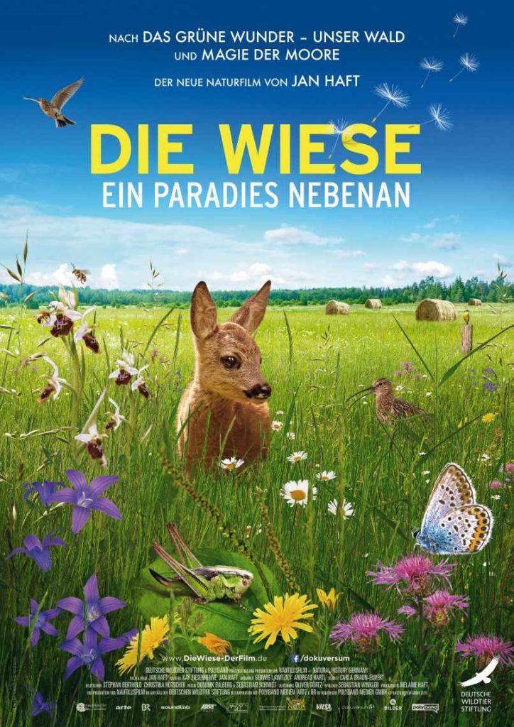 Kinoplakat: Die Wiese – ein Paradies nebenan