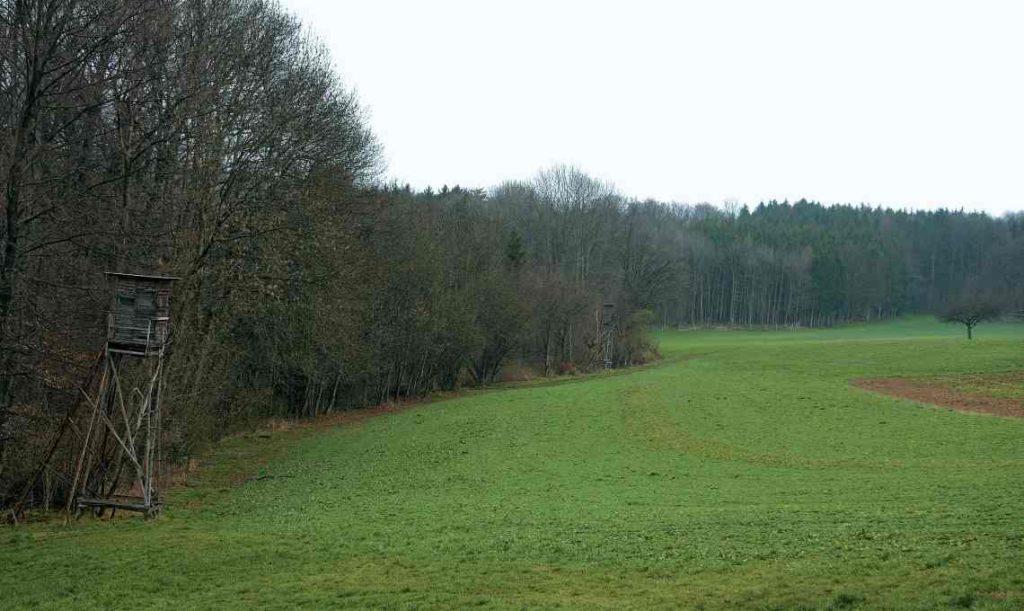 Hochsitz am Waldrand