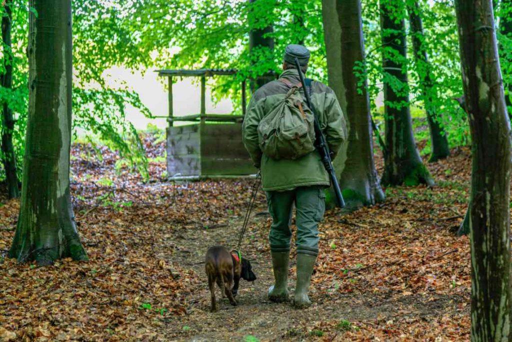 Jäger auf Pirschweg